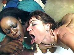 Dude hammering white and ebony moms